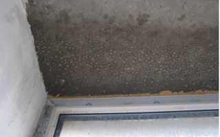 Конденсат на лоджии и балконе