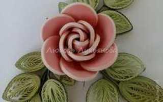 Контурный квиллинг: мастер класс кручения цветка розы от Беловой Светланы