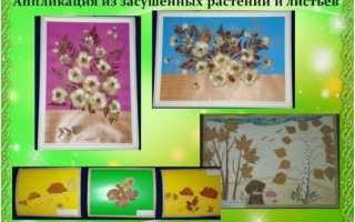 Аппликации из природных материалов своими руками для детского сада