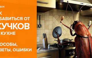 Как избавиться от жучков в крупах и муке на кухне навсегда народными способами