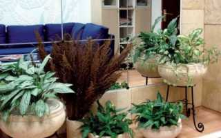 Живые цветы в интерьере: флористика и фитодизайн