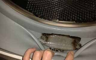 Как избавиться от плесени, которая появилась в стиральной машине