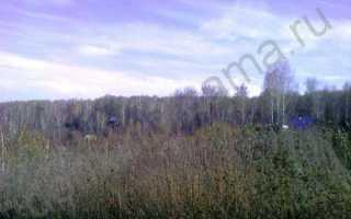 План участка: описание с фото, отзывы, советы