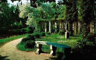 Необычные скамейки для сада