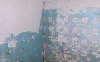 Можно ли класть плитку на краску: как положить на окрашенную стену, на какую поверхность клеить кафель