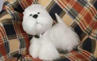 Валяние из шерсти: мастер класс по изготовлению милого пса