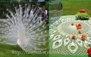 Вязание крючком большой круглой салфетки «Павлинье перо»