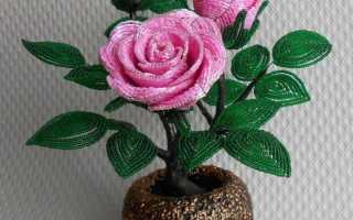 Роза из бисера: мастер-класс по плетению цветка от Аллы Масленниковой