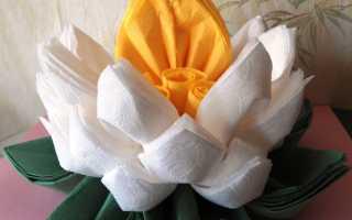 Лотос из бумажных салфеток: мастер-класс с пошаговой инструкцией